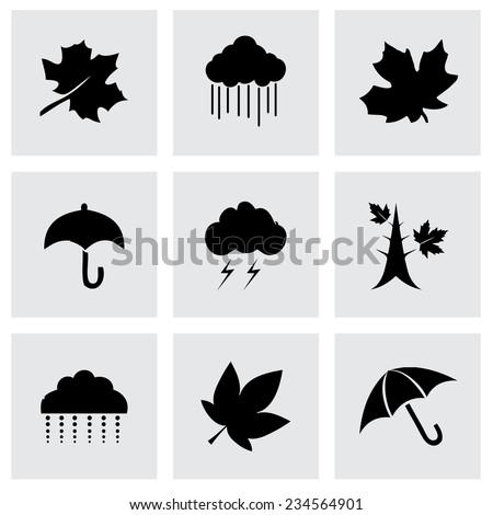 vector autumn icon set on grey