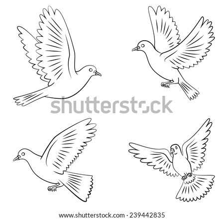 dove flying set collection