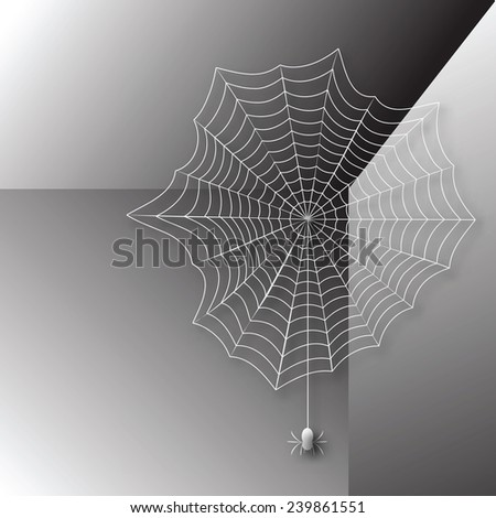 spider in a web woven corner of
