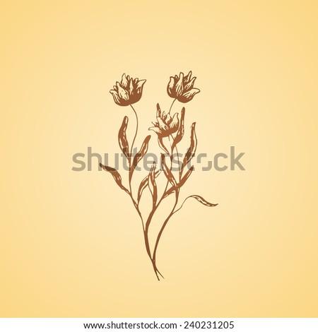 tulip flower hand drawn flower