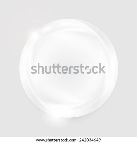 vector frame  circle brochure