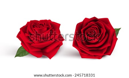 valentines day sweet red roses
