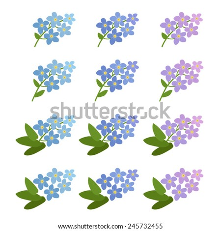 forget me not vector