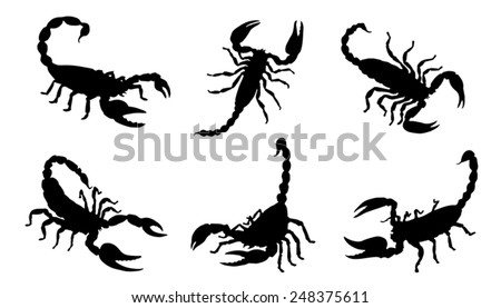scorpion silhouettes on the
