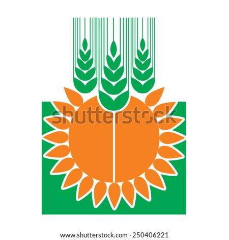 Sunflower field 1 wallpaper