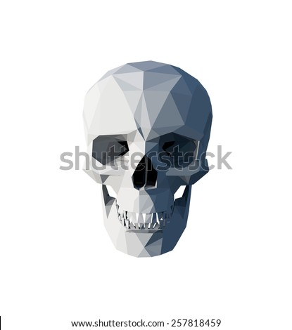 vector white low poly skull on