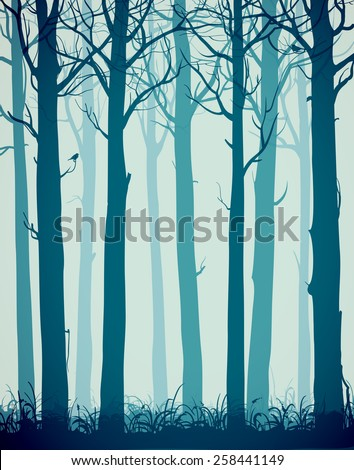 natural background with