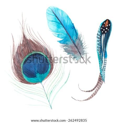 watercolor exotic birds
