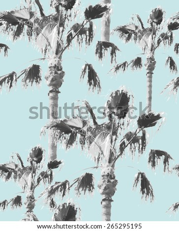black and white palms on the