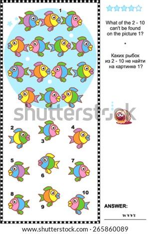colorful fish visual logic