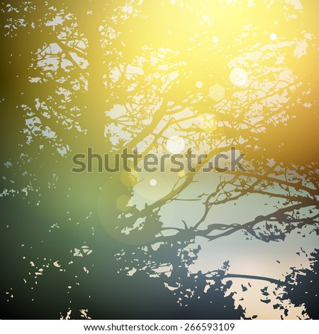 summer design  forest trees