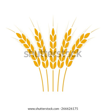 wheat ears or rice icon crop