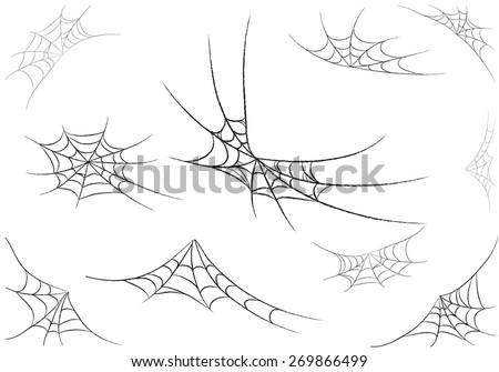 spider web monochrome vector