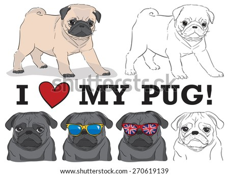 set of cute pugs in sunglasses