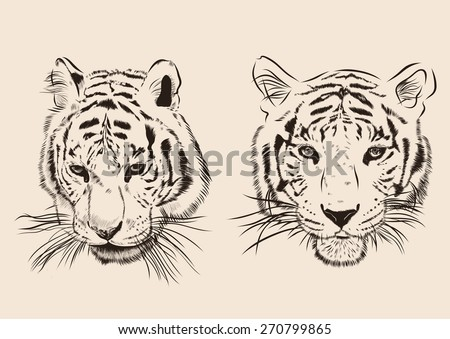 original artwork tiger with
