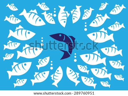 curious white fishes