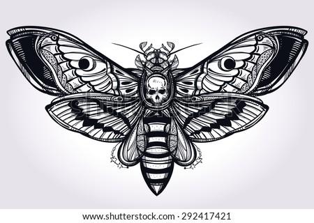 deaths head hawk moth hand