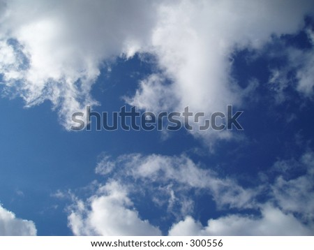 vector background with the