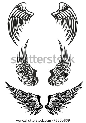 vector illustration wings set