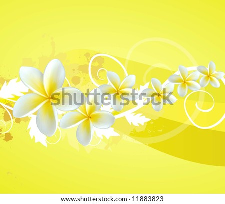 a composition with frangipani flowers and swirls - stock photo