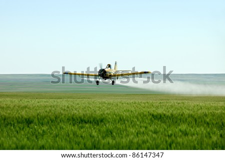 A crop duster airplane flies low over a wheat field spraying fungicide and pesticide. - stock photo