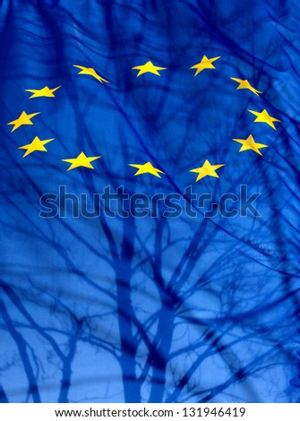 A European Union flag with the silhouette of a shadow tree and branches