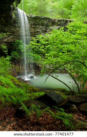 A healthy patch of ferns line the bottom edge of Bowers Hollow Falls. - stock photo