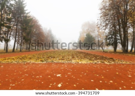 a park in the autumn, during cloudy weather, late autumn, defocused