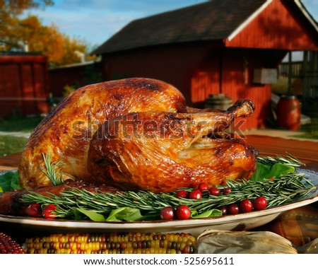 A roasted turkey is pictured outdoors in a rural setting.