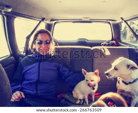 a snapshot of a girl in the back seat of a car with 3 dogs on a winter day toned with a retro vintage instagram filter effect app or action  - stock photo