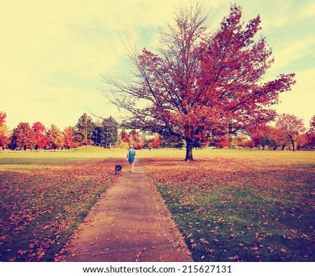 a woman walking with her pit bull in a park on an autumn day toned with a retro vintage instagram filter  - stock photo