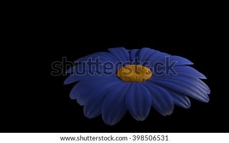 abstract of blue gerbera flower 3d render - stock photo