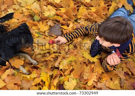 Aerial view of young boy and dog playing in Autumn leaves. - stock photo