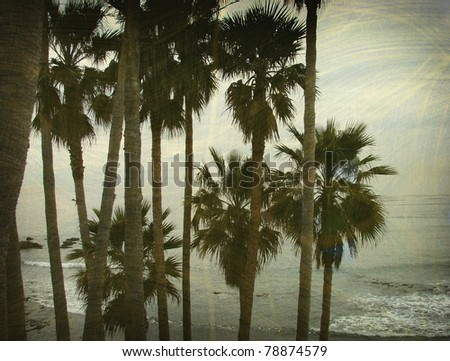 aged and worn vintage photo of palm trees on beach