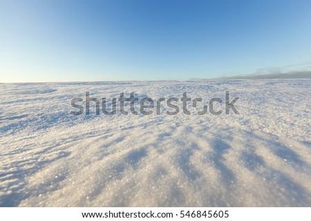 Agricultural field covered with snow drifts in the winter season. Blue sky in the background