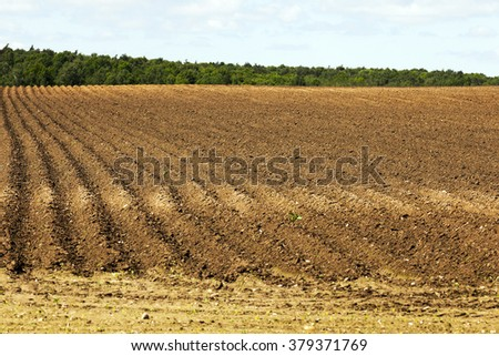 agricultural field that was plowed furrows for planting potatoes. Spring. blue sky - stock photo