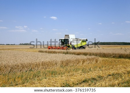agricultural field, which made harvesting of cereals. summer. - stock photo