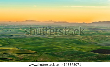 agriculture field in beautiful morning, Palouse WA - stock photo