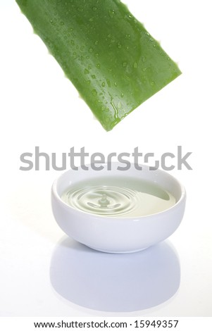 Aloe Vera sliced leaf with juice drop on white bowl - stock photo