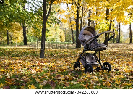 an empty baby carriage in the park in autumn season
