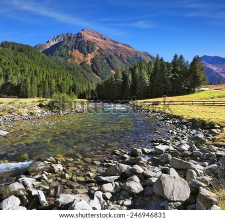 Austrian Alps. Headwaters Krimml waterfalls. The narrow stream flows between fields and pine forests. Bluish - green transparent water glows in the sun - stock photo