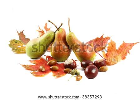 Autumn Still Life with pears - stock photo
