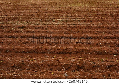 Background image of a plowed field - stock photo