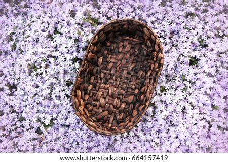 Background Of Purple Flower Garden And Woven Basket Prop