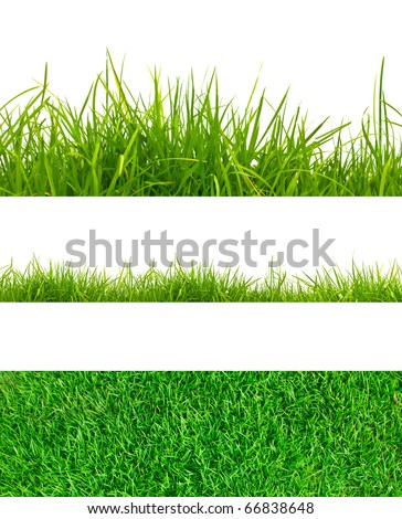 3 backgrounds of fresh spring green grass  Isolated On White - stock photo