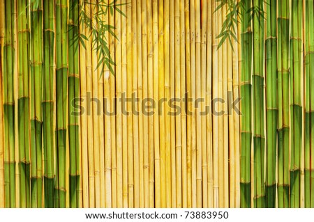 bamboo Background great for any project. frame of bamboo leaves background. - stock photo
