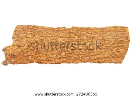 bark isolated on white background, with clipping path - stock photo