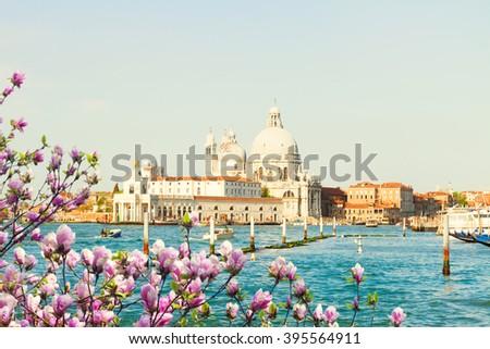 Basilica Santa Maria della Salute and Grand canal water at spring day, Venice, Italy - stock photo