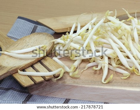Beansprout background or texture image.  - stock photo