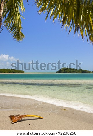 Beautiful Summer landscape with palm trees, blue sky and clear ocean water. Taken in tropical paradise of Bahia Honda Key in Florida, USA. - stock photo